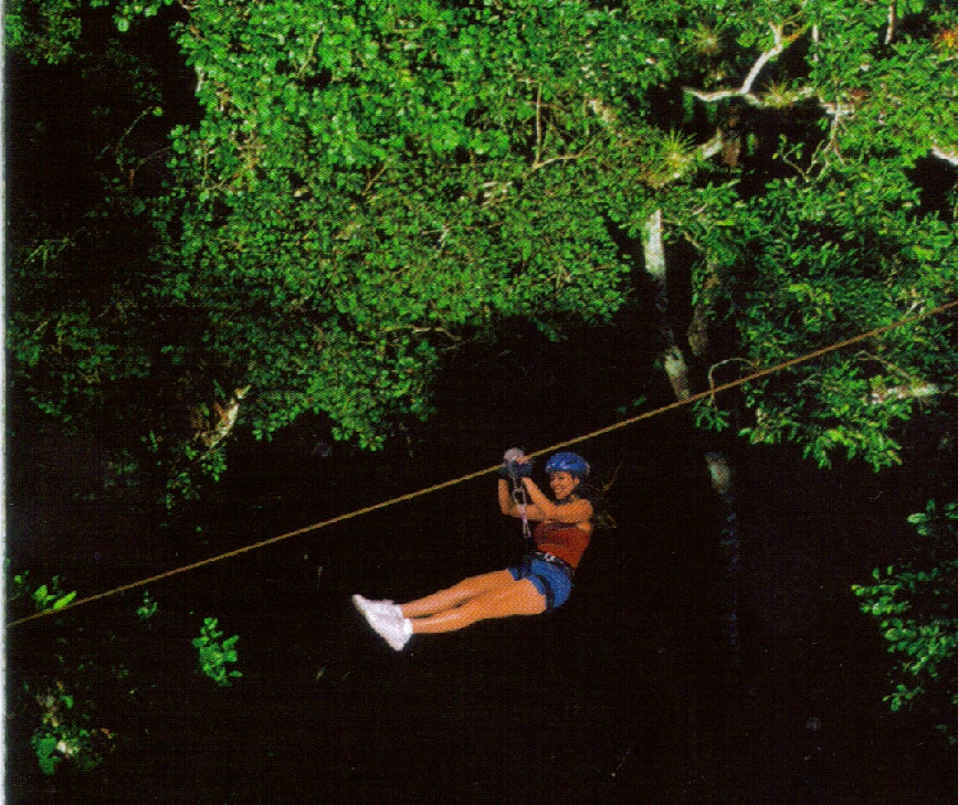 Canopy Tours in Puerto Vallarta