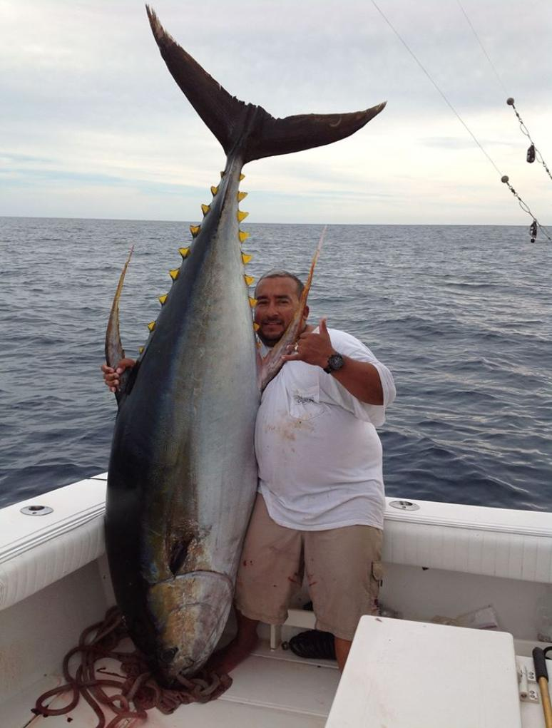 Puerto vallarta yellowfin tuna fishing questions and answers for Fishing for tuna