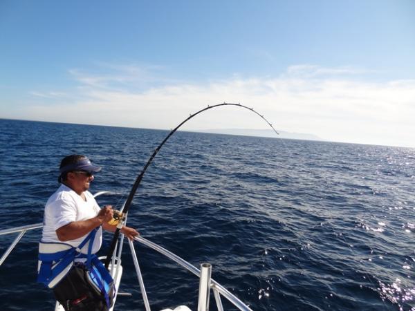 Puerto vallarta fishing report february 2012 tuna marlin for Deep sea fishing puerto vallarta