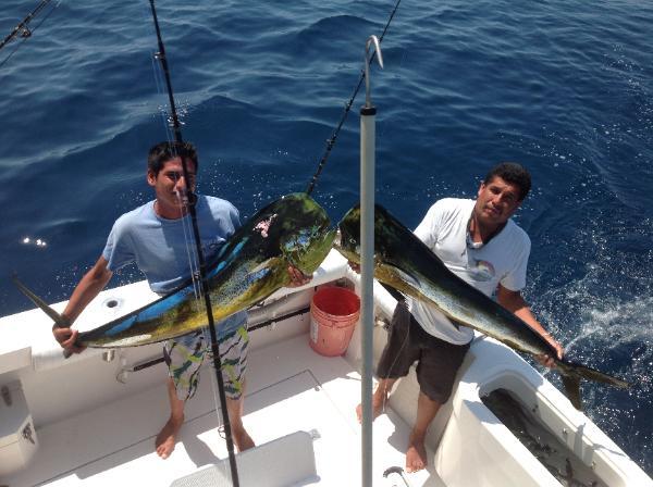 Puerto Vallarta Fishing Charters >> Puerto Vallarta Dorado fishing